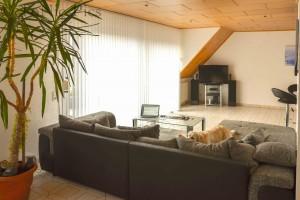 Wohnzimmer umbau 1 (1 von 6)