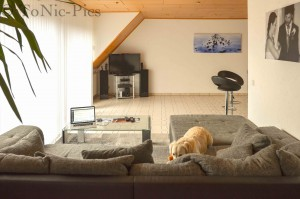Wohnzimmer umbau 1 (2 von 6)