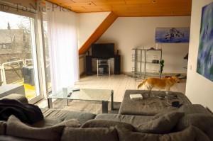 Wohnzimmer umbau 2 (1 von 8)