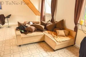 Wohnzimmer umbau 2 (5 von 8)