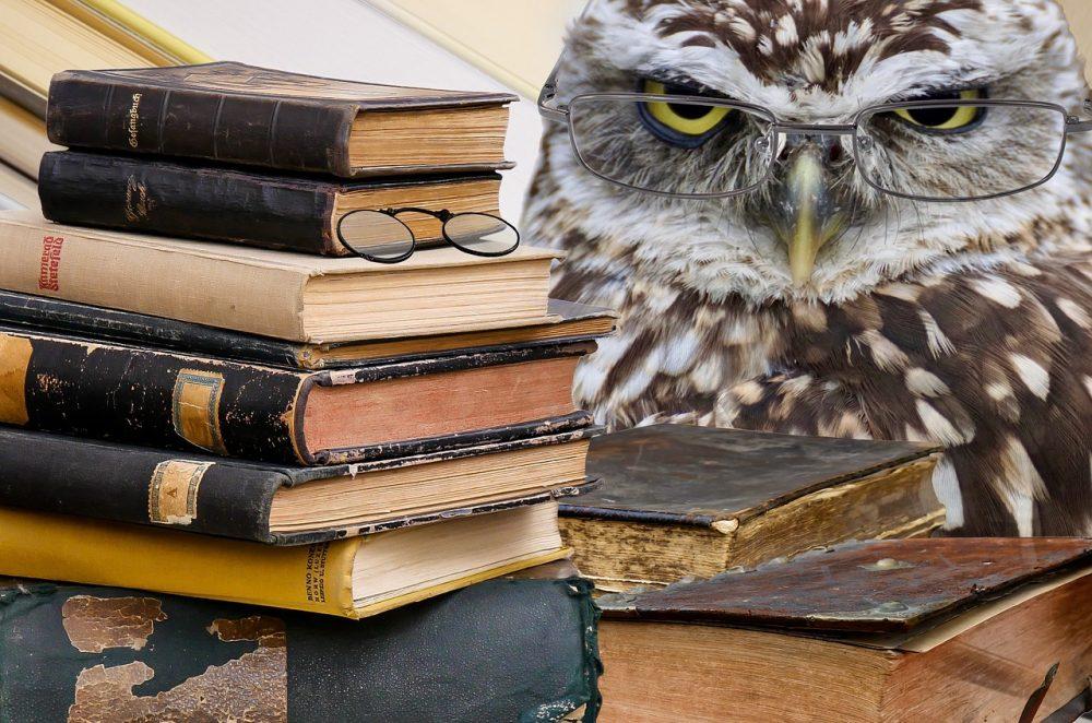 Tom bloggt seinen Alltag, Freitagsgedanken, Lernen als Lebensaufgabe